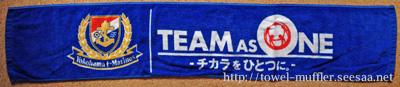 team0089_2011_11.jpg